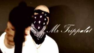 mr.trippalot-smokin