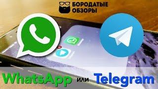 WhatsApp или Telegram?