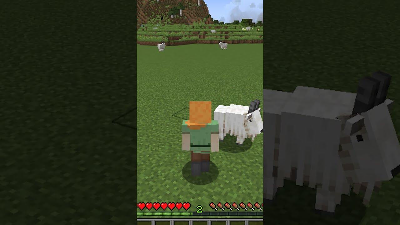 Minecraft New Update 1.17 #shorts