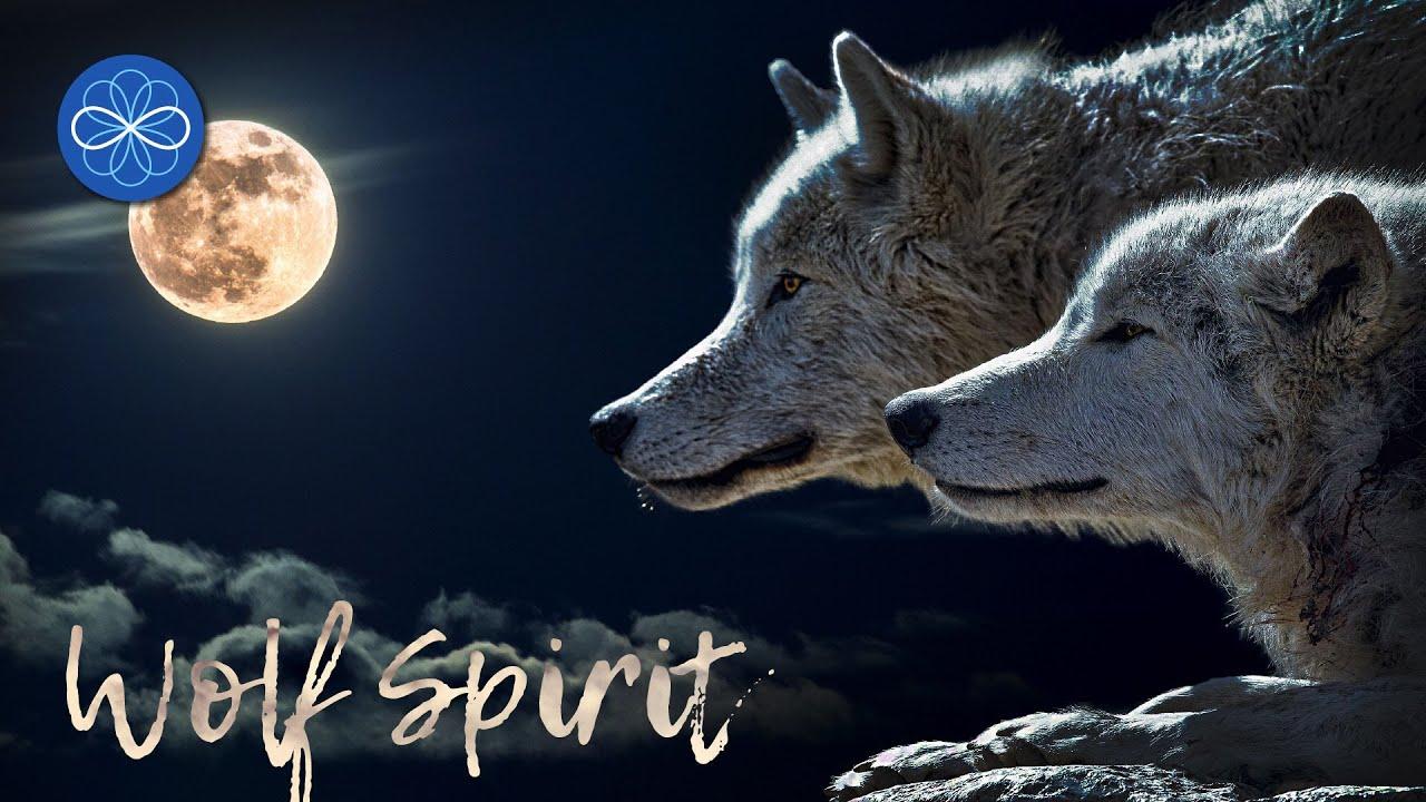 """""""Wolf Spirit"""" - musique de guérison chamanique 432 Hz (tambours chamaniques)"""