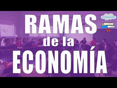 ACTIVIDAD RESUELTA 5. La dualidad económica (afirmaciones positivas-normativas)