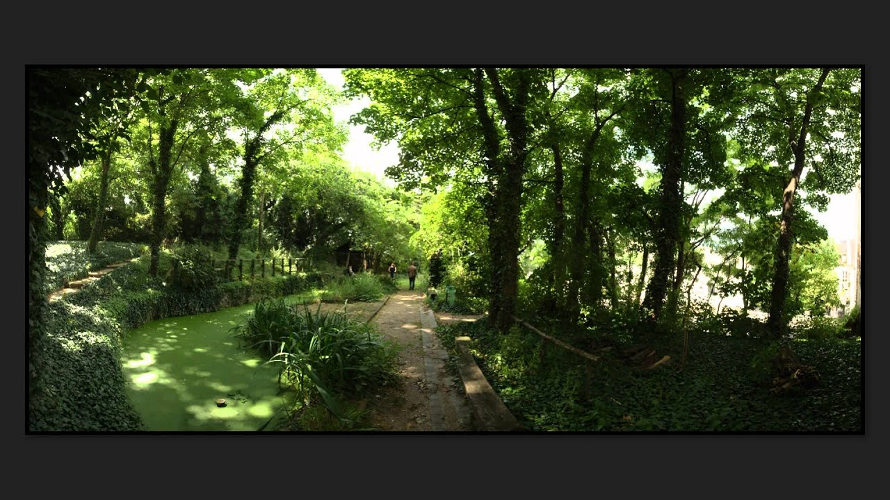 jardin sauvage saint vincent youtube