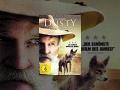 Dusty der Wüstenhund