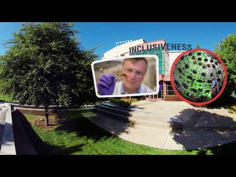Who We Are and What We Do - Life at LLNL in 360