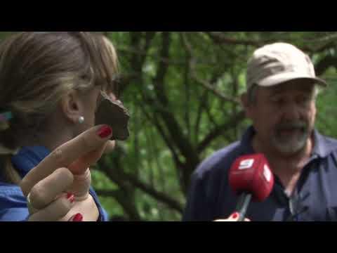 Informe Cerros indios en Gualeguaychú