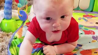 Baby and Cat Fun and Fails   Funny Baby Video 2020
