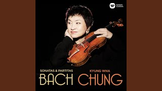 Violin Sonata No. 3 in C Major, BWV 1005: III. Largo