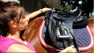 TUTO: Seller et brider un cheval 🐴