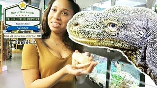 Скачать VISITING THE BEST REPTILE PET STORE IN THE WORLD DFW REPTARIUM