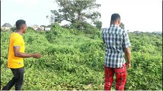 I sold one land to 3 people see gbege (LaughPillsComedy)