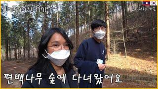 라오스 여자친구와 편백나무숲 길을 걸었어요