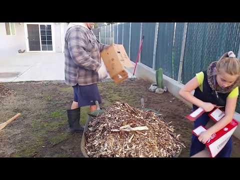 Мульчирование земли картонными