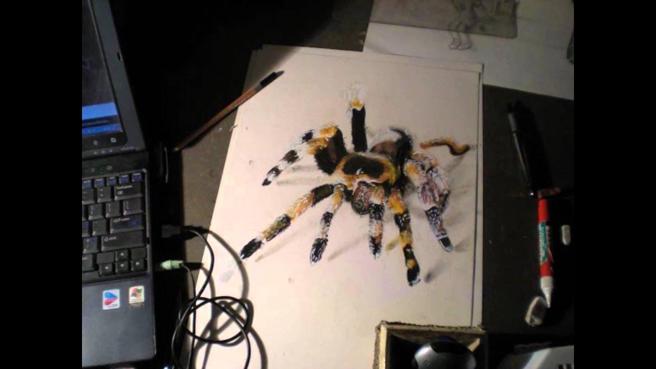 Como se dibuja una araña o tarantula paso a paso - YouTube