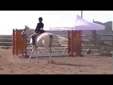 Krystal & Caspian - December 2013 Four Reel Farm Schooling Show