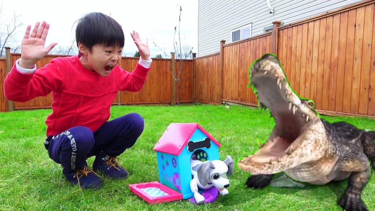 dog was eaten by crocodile play house ワンワン ワニに食べらたー!! 犬小屋を作るよ! おゆうぎ こうくんねみちゃん