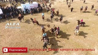 АЛАМАН УЛАК // КАМАЛ ПАЛВАН  КАДАМЖАЙ // АЛТЫН КУР  2019