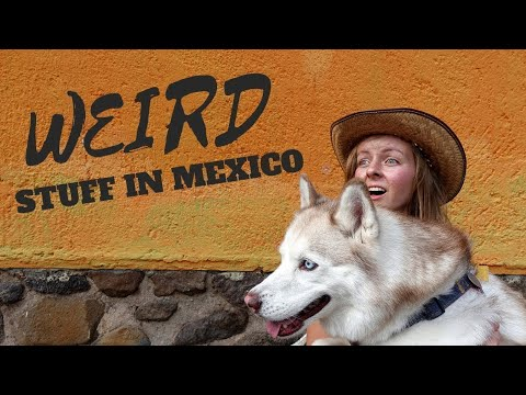 BIZARRE things about Mexico that used to FREAK US OUT!  Vlog #183
