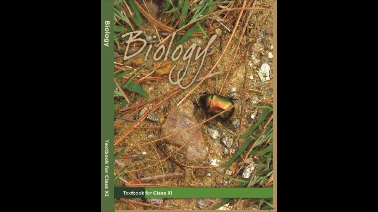 Summary the living world chapter 1 biology class 11 summary the living world chapter 1 biology class 11 audiobook malvernweather Gallery