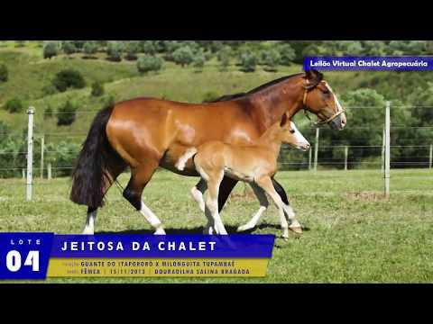 LOTE 04 - Jeitosa da Chalet