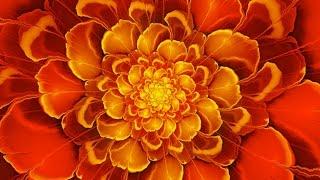 Chakra Meditation Music : Sacral Chakra Healing & Balancing Meditation Music