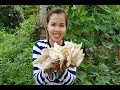 Amazing Cooking Beef Soup With Mushroom Recipes-Cooking Beef Recipes-Village Food Factory-Asian Food