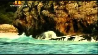 Odiseo y las Sirenas (La batalla de los Dioses-fragmento).