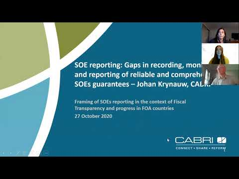 (ENG) Reporting and management of guarantees to SOEs and the link with fiscal risks