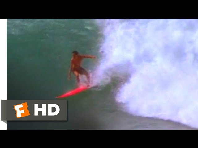 Big Wednesday (1978) - The Hottest Ride Ever Scene (10/10) | Movieclips