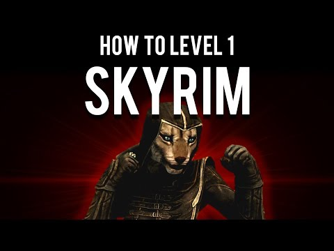 How to Beat Skyrim Level 1