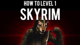How to Beat Skỳrim Level 1
