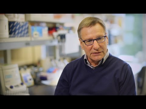 Immunotherapy shows great promise