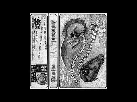 Anhedoni / Remiso - Split