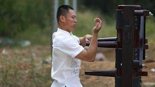 Video Wing Chun Master | Master Dong | Dragon Mountain Kung Fu Academy download MP3, 3GP, MP4, WEBM, AVI, FLV Agustus 2017