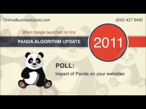 Online Business Genie Menlo Park CA  – Get an Effective Website Audit Right Now!