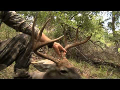 Hunting With Smith And Wesson Performance Center 44 Mag Stealth Hunter