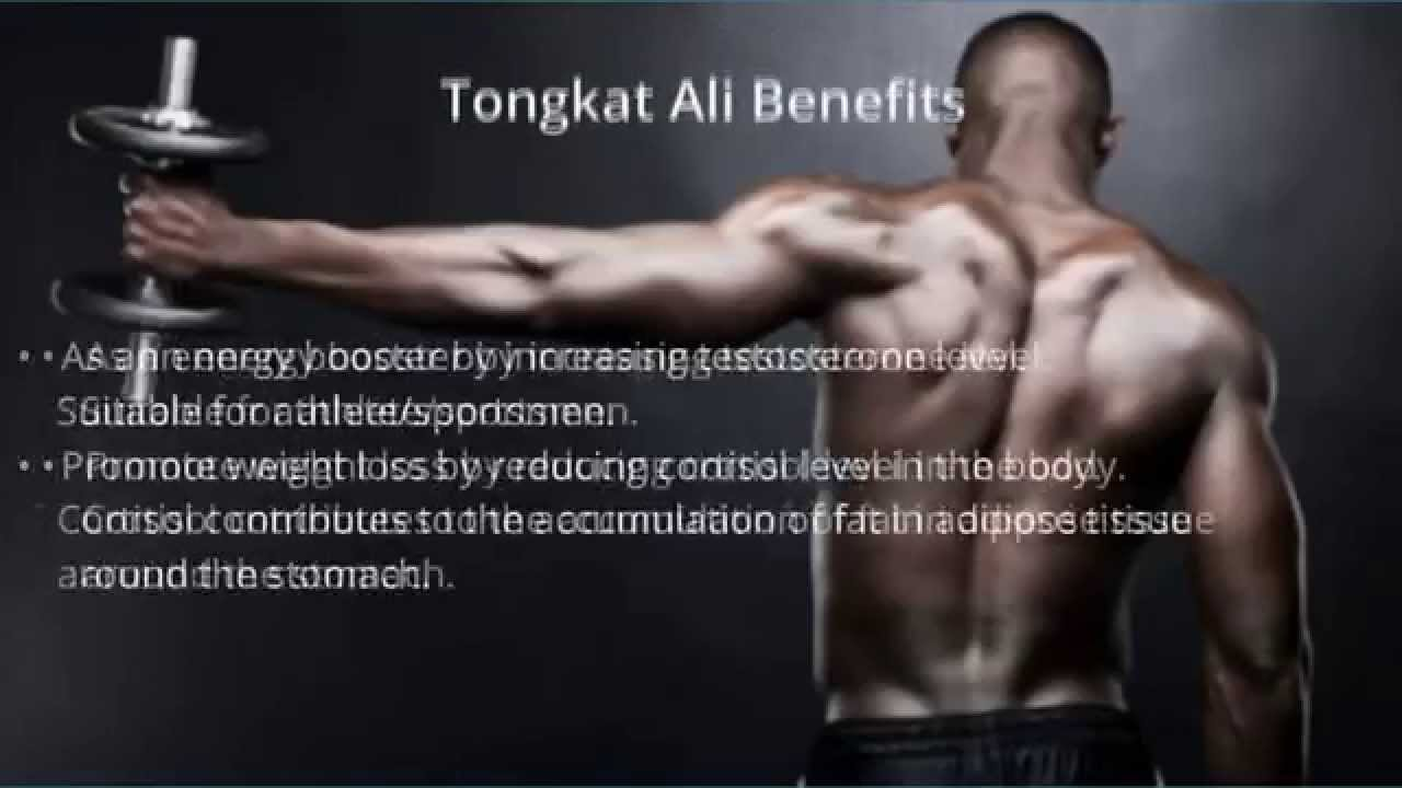 What are the benefits of tongkat ali?