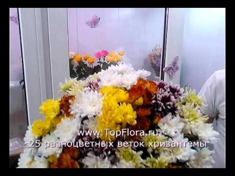 25 веток хризантемы разного цвета от TopFlora.ru