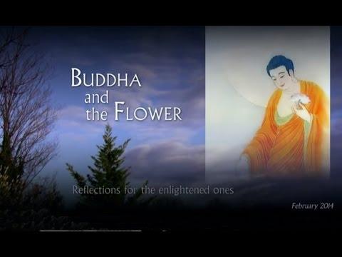 Buddha and the Flower (Ashin Ottama)