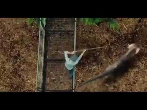 hollwood tamil dubbed movie