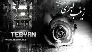 Zainab (s.a) Kalam e Pak ki Ayat ka Naam Hay