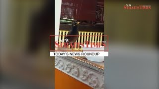 Today's news roundup - October 6, 2017