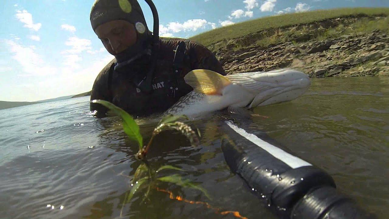 видео рыбалка на щуку подводное видео