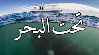 قصص بوليسية : تحت البحر ( كـاملة ) !!