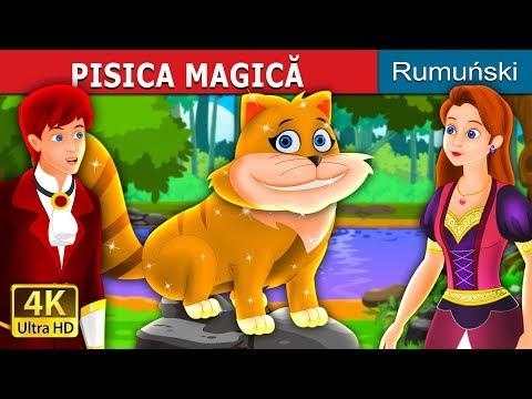 PATUL MAGIC | Povesti pentru copii | Romanian Fairy Tales from YouTube · Duration:  13 minutes 41 seconds