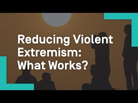 Reducing Violent Extremism: What Works?