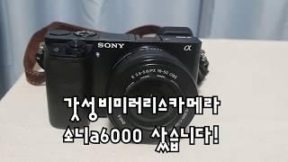소니 a6000 (미러리스카메라 소개 및 리뷰) [샘플…