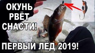 ПЕРВЫЙ ЛЁД 2019 2020 ОКУНЬ РВЁТ СНАСТИ РЫБАЛКА на МОРМЫШКУ на озере Машезеро
