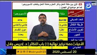 الأحياء   حصة تركيز نهائية (1) باب التكاثر   د. إدريس جلال   حصص الشهادة السودانية 2020