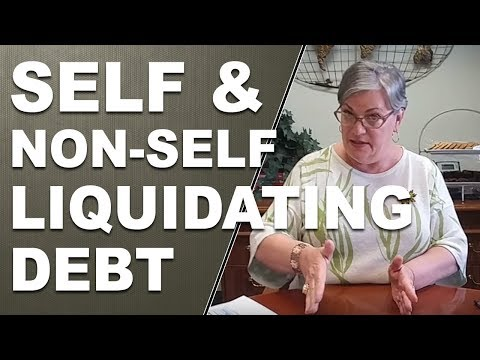 Two Types of Debt - Self Liquidating Debt - Non Self Liquidating Debt