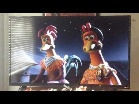 Chicken Run 2000 : Ginger Talks To Rocky